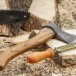 Axe and chainsaw file — Stock Photo #44645443