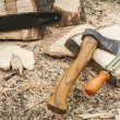 Axe and chainsaw file — Stock Photo #44645449