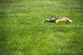 Running shoes on green grass — Stock Photo