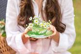 Camomile tea cup — Stock Photo