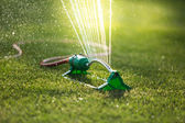 Grass sprinkler — Foto de Stock