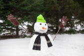 Funny snowman — Stock Photo