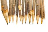 уникальные острые карандаши — Стоковое фото