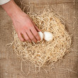 Men hand taking one white egg from nest — Stock Photo