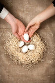 Women and men hand putting white egg in nest with other eggs — Stock Photo
