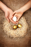 Men and women hands putting white egg to nest with golden eggs — Stock Photo