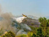 Canadair in action — Stock Photo