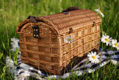 Wicker basket on the grass — Stock Photo