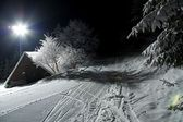 Winter — Foto Stock