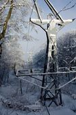 Snow — Stock Photo