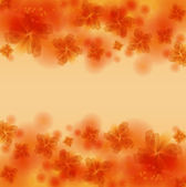 Floral abstract background — Stock Vector