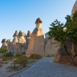 Cappadocia — Stock Photo #40476721