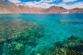 Red sea day — Stock Photo