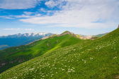 Berg dag zomer — Stockfoto