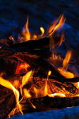 Bonfire — Stock Photo