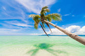 Day tropical sea — Foto Stock