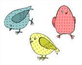 Three small colored birds — Stock Vector
