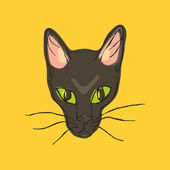 Head like a cat panther — Stock Vector
