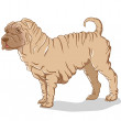 Stock Vector: Shar Pei cream