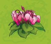 Flores de ciclamen — Vector de stock