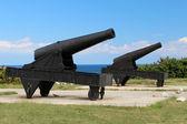 Zwei kanonen — Stockfoto