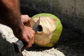 Cutting coconut — Stock Photo