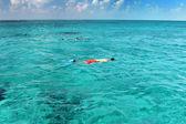 Snorkeling — Stock fotografie