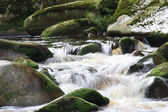 Flowing water in nature — Stock Photo