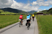 Cycling in the Alps — Foto de Stock