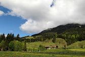 Summer Austrian Alps  — Stock Photo