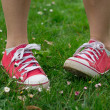 Vintage red shoes in green grass — Stock Photo