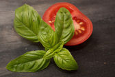 Tomato and basil — Stock Photo