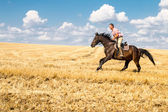 Man ride horse on field - freedom and hapiness — Photo