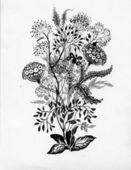 Flower sketch — Stock Photo