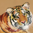 Stock Photo: Watercolor Tiger on brown background
