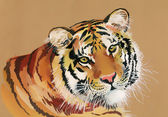 Watercolor Tiger on a brown background — Stock Photo