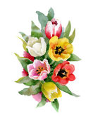 Watercolor tulips bouquet — Stock Photo