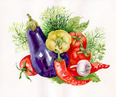 Watercolor vegetables — Stock Photo