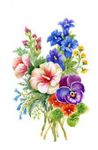 Coloridas flores silvestres — Foto de Stock