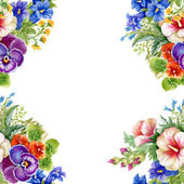 Floral colorful mallow flowers frame — Stockfoto