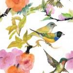 Wild birds and flowers — Stock Photo #45680665