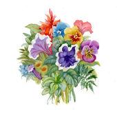 Wilde bloemen boeket — Stockfoto
