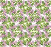 Flowers background — Stockfoto