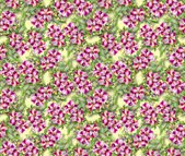 Colorful floral seamless pattern — Photo