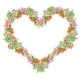 Colorful alstroemeria heart — Photo