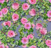 Wzór różowy róż — Zdjęcie stockowe