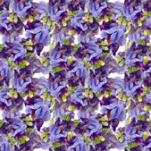 Irises pattern — Stock Photo