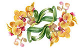 Watercolor orchids — Stock Photo