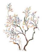 Spring tree twigs — Stock Photo