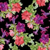 野花模式 — 图库照片